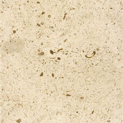 BEIGE ROYAL 40X40X2CM POLISHED